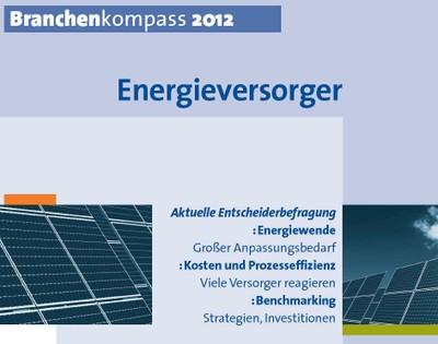 Branchenkompass Energieversorger 2012